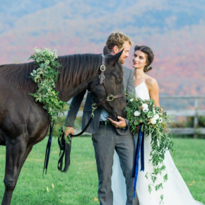 Ruffled — National Velvet Wedding Inspiration