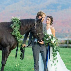 Ruffled — National Velvet Wedding Inspiration